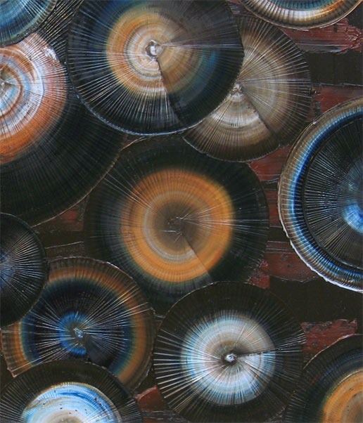 'CALLISTO' by AJ LaGasse - Detail #1