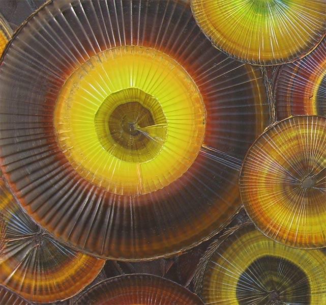'PURELY PISTACHIO' by AJ LaGasse - Detail #1